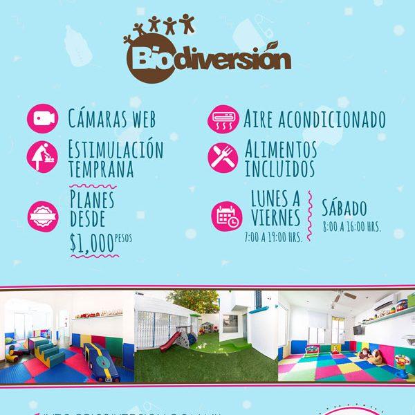 diseño web cancun