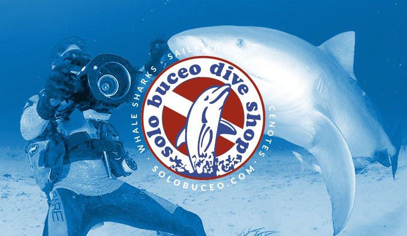 Sitio web para Solo Buceo